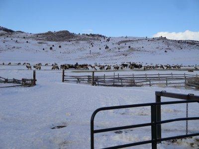 Hardware Ranch